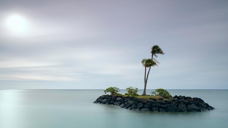 """""""Żaden człowiek nie jest samoistną wyspą"""""""