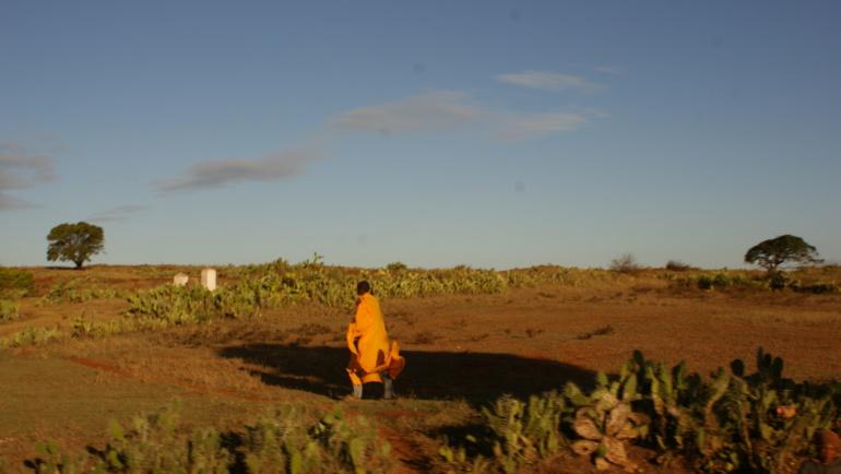 Dlaczego powinniśmy zaangażować się w zbiórkę na budowę studni na Madagaskarze?